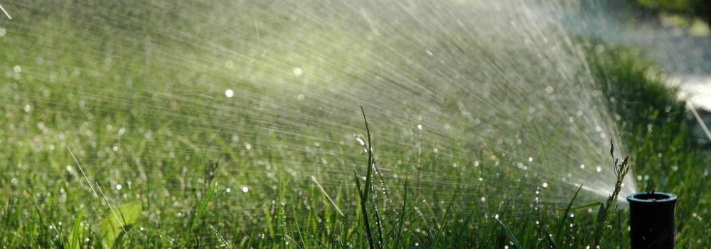 home sprinkler system diy